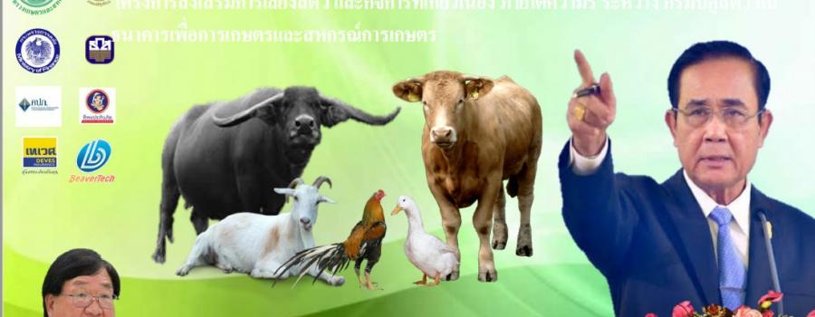 โครงการส่งเสริมการเลี้ยงสัตว์ภายใต้ความร่วมมือระหว่าง กรมปศุสัตว์ และ ธกส.